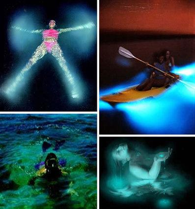Tempat Berenang Paling Mengagumkan di Dunia | Forum.Jalan2.com | Scoop.it