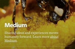 Medium needs to figure out what it wants to be when it grows up | Public Relations & Social Media Insight | Scoop.it