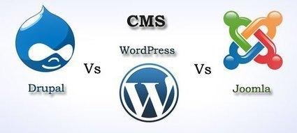 WordPress vs. Joomla vs. Drupal: Which CMS is best for a business website? | Open Source CMS Development | Scoop.it