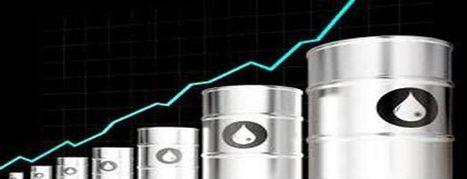 Petrol and diesel prices soar   AAJ News   Bio fuels   Scoop.it