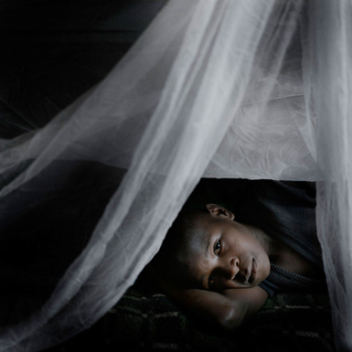 New estimates of malaria deaths: concern and opportunity   Parasites, infections, nutrition and research   Scoop.it