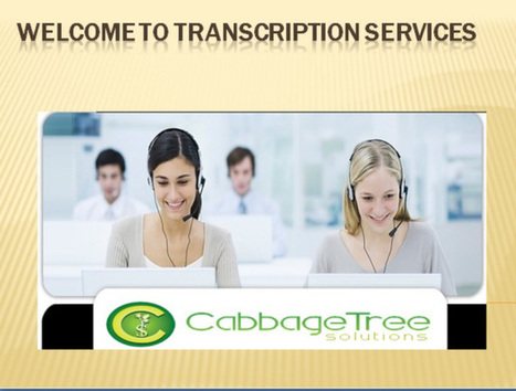 cabbage tree solution | Email Marketing | Scoop.it