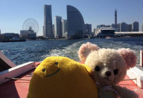 Japon : une agence fait voyager vos peluches | Voyage | Scoop.it