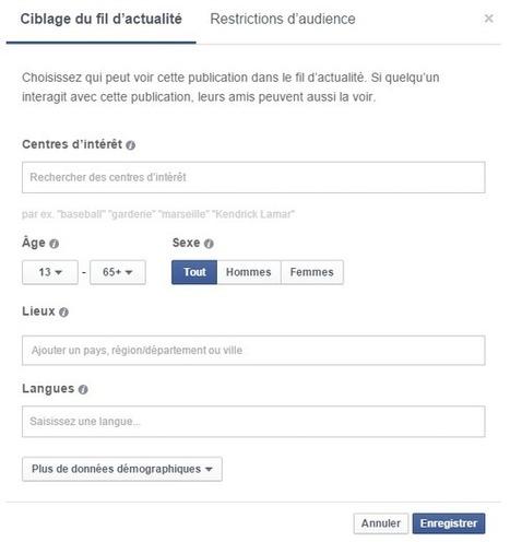 Comment activer l'outil d'optimisation d'audience de la Page Facebook ? | Clic France | Scoop.it