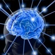 Tossicodipendenza: l'eroina modifica la corteccia orbitofrontale | Centro Disintossicazione Eroina | Scoop.it