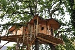 Pour cet été, choisissez l'éco-tourisme   Veille tourisme durable   Scoop.it