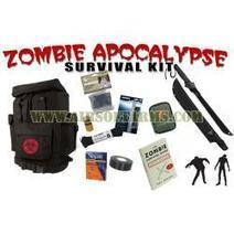 Airsoft Arms, Zombie Apocalypse Survival Kit v2.0 | Thumpy's 3D House of Airsoft™ @ Scoop.it | Scoop.it