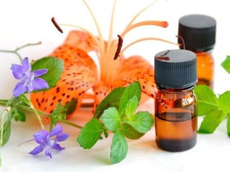 Valuable Instructions to Keep in Mind before Using Organic Essential Oils | Aromaaz International | Aromaaz International - Buy Pure and Natural Essential oils at Wholesale prices | Scoop.it