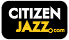 Citizen Jazz - Jazz à Vienne 2012, c'est cette semaine à Paris | Jazz Buzz | Scoop.it