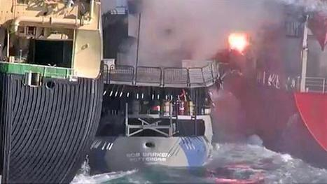 Sea Shepherd ready to sail in battle against Japanese whalers - Herald Sun   Marine conservation   Scoop.it