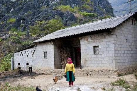 EU helps Vietnam phase out asbestos - News VietNamNet   Asbestos   Scoop.it