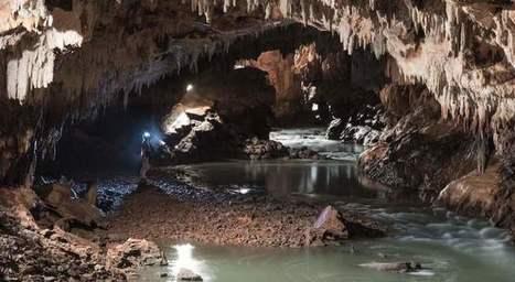 Las fantásticas grutas de Postojna, donde vivían crías de dragón   Acuario   Scoop.it