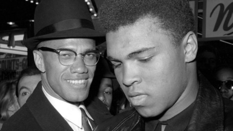 Pulitzer Prize goes to Malcolm X bio but no fiction award | LibraryLinks LiensBiblio | Scoop.it
