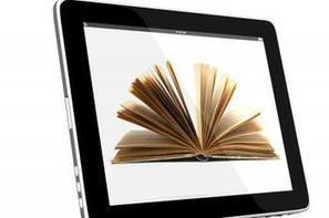 L'e-book pèse 4,7% du marché français du livre et croît de 20% par an | Culture & Entertainment - Digital Marketing | Scoop.it