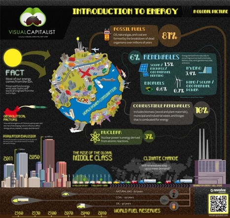 Intro to Energy: A Global Picture | green infographics | Scoop.it