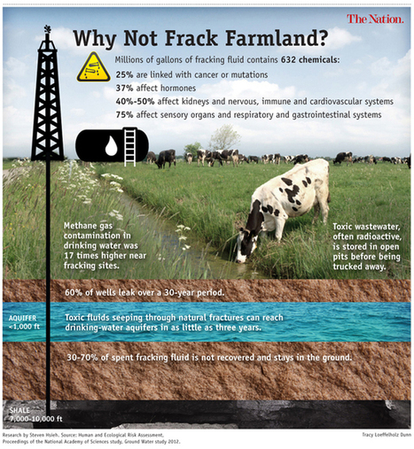 Fracking Our Food, Health and Farmland | Biodiversity IS Life  – #Conservation #Ecosystems #Wildlife #Rivers #Forests #Environment | Scoop.it