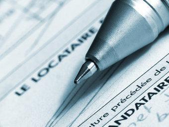 Baisse des loyers : la carotte fiscale de la FNAIM | Immobilier | Scoop.it