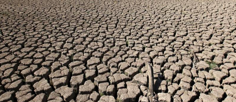 Drought-Stricken Texas Fracks Its Way to Water Shortages | EcoWatch | Scoop.it