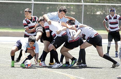 Rugby universitario un nuevo proyecto - Vanguardia.com.mx | Fomentación del Rugby en Mexico | Scoop.it