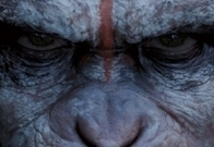 Dawn of the Planet of the Apes 2014 - Picture   Android Apps, Download APK, Android Applications, Android APK.   Scoop.it