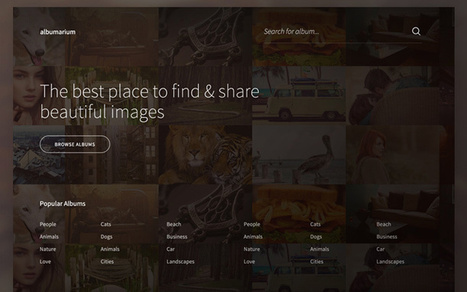36 Examples of Web Design Homepage Layout Concepts | Web design | Scoop.it