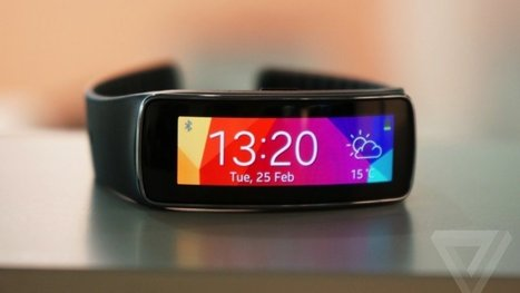 Samsung's Gear Fit to cost $199 | Nerd Vittles Daily Dump | Scoop.it