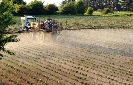 Quels pesticides mangeons-nous sans le savoir ?   décroissance   Scoop.it