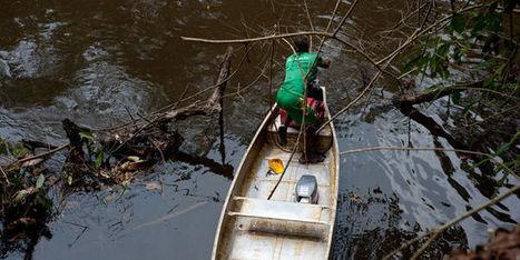 En Guyane, une importante filière d'immigration illégale démantelée | Guyane orpaillage illégal | Scoop.it