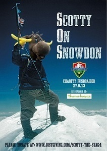 Scotty The Stag to climb Mount Snowdon! | Windsor FC Supporters Club Newsletter | Scoop.it