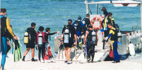 10 reasons why you'll love scuba diving. - The official blog of Exvana | All about water, the oceans, environmental issues | Scoop.it