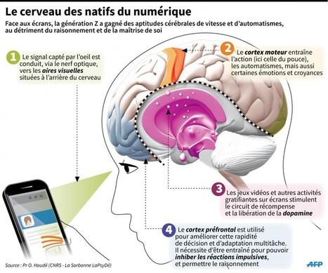 Génération Z : le cerveau des enfants du numérique | ENT | Scoop.it