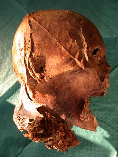 La cabeza momificada de Enrique IV es auténtica - Arqueología, Historia Antigua y Medieval - Terrae Antiqvae | Enseñar Geografía e Historia en Secundaria | Scoop.it