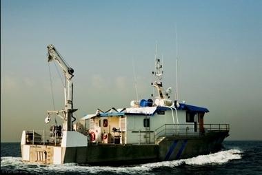 EcoOcean   Marine Research and Education, Home Page   Mediterranean Marine Educators   Scoop.it