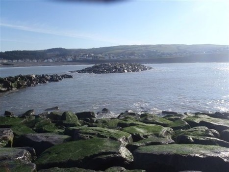 Borth Community Website - Coastal Defence Progress Pictures February 2012 | Coastal Management in Borth | Scoop.it