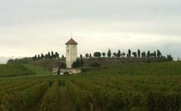 Bordeaux Wines | What You Don't Know About Bordeaux (VIDEO) | Bordeaux wines for everyone | Scoop.it
