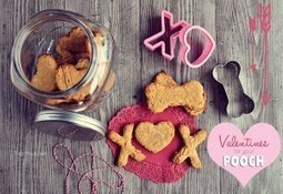 Homemade Peanut Butter Dog Biscuits | TidyMom | Pet Health | Scoop.it