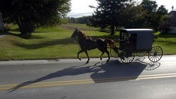 Fatal crash shows perils of Amish buggies on Pa. roads | AP Human Geography Herm | Scoop.it