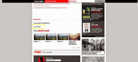 On parle du projet Jus d'Olive sur France Inter | Jus d'Olive | web etc. | Scoop.it