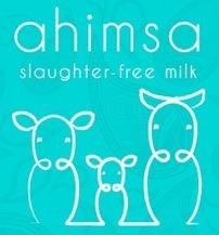 Ahimsa milk, du lait sans cruauté ? | Vegactu - végétarien, végétalien et végan | Scoop.it