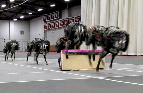 "Watch This Terrifying Cheetah Robot Jump Over Hurdles | WIRED | L'impresa ""mobile"" 