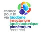 Espace pour la vie | Eating insects: a disruptive food innovation | FoodFighters | Scoop.it