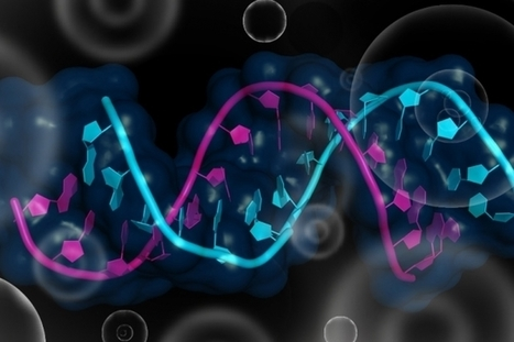 Modular proteins can be used to track or manipulate RNA inside living cells | Amazing Science | Scoop.it