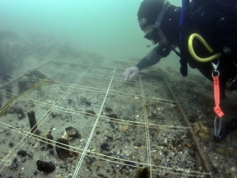 DNA recovered from underwater British site may rewrite history of farming in Europe | Archaeobotany and Domestication | Scoop.it