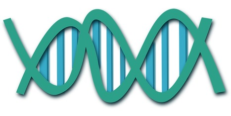 Genome Engineering Market to Reach US$7.21 bn by 2023   alina martin   Scoop.it