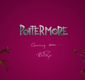 Pottermore: YA Ebooks Are About to Take Off | Brendan Gannon | Writing and reading fiction | Scoop.it