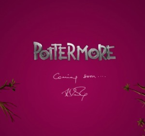 Pottermore: YA Ebooks Are About to Take Off | Brendan Gannon | Publishing Digital Book Apps for Kids | Scoop.it