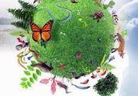 News Press - Regard sur les institutions de la biodiversité - IRSTEA | Environnement et développement durable, mode de vie soutenable | Scoop.it
