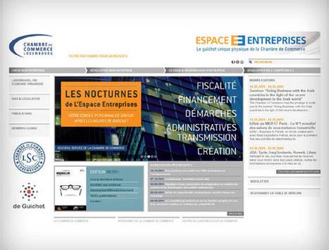La Chambre de Commerce de Luxembourg s'offre un nouveau site internet | Luxembourg.pro | Luxembourg (Europe) | Scoop.it