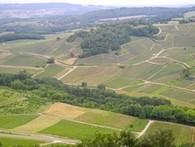 Dix raisons pour aller à la Percée du Vin Jaune - Wine Tourism In France | Le vin quotidien | Scoop.it