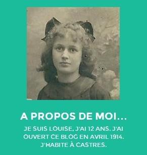 Blog fictif d'une jeune fille en 1914 réalisé par des collégiens | La Grande Guerre | Scoop.it
